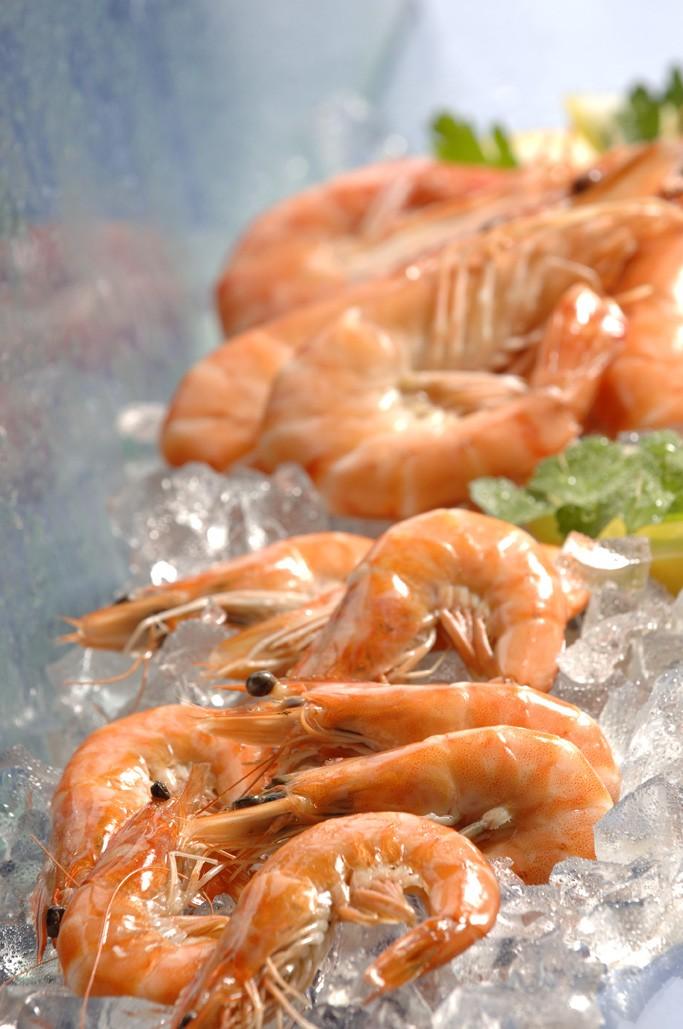 photo crevettes entières cuites vannaméi